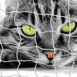 Cat Nets in 30mm mesh size, with stainless steel wire reinforcement