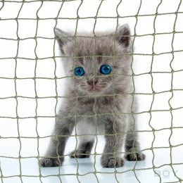 Cat Safety Net in 30mm mesh, thread diameter 1.2mm - extra strong